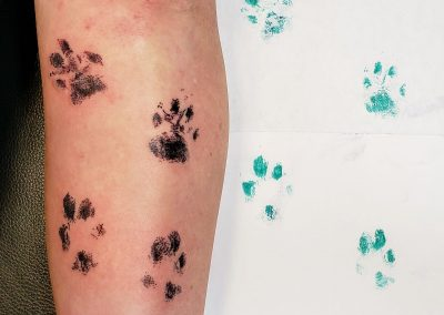 paw prints tattooed from photo